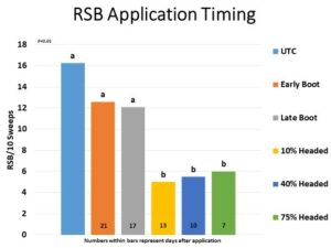 insecticide application timing for RSB