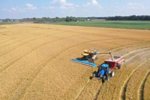 rice harvest near Stuttgart, Arkansas