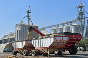 dumping grain carts - make a marketing plan before you begin